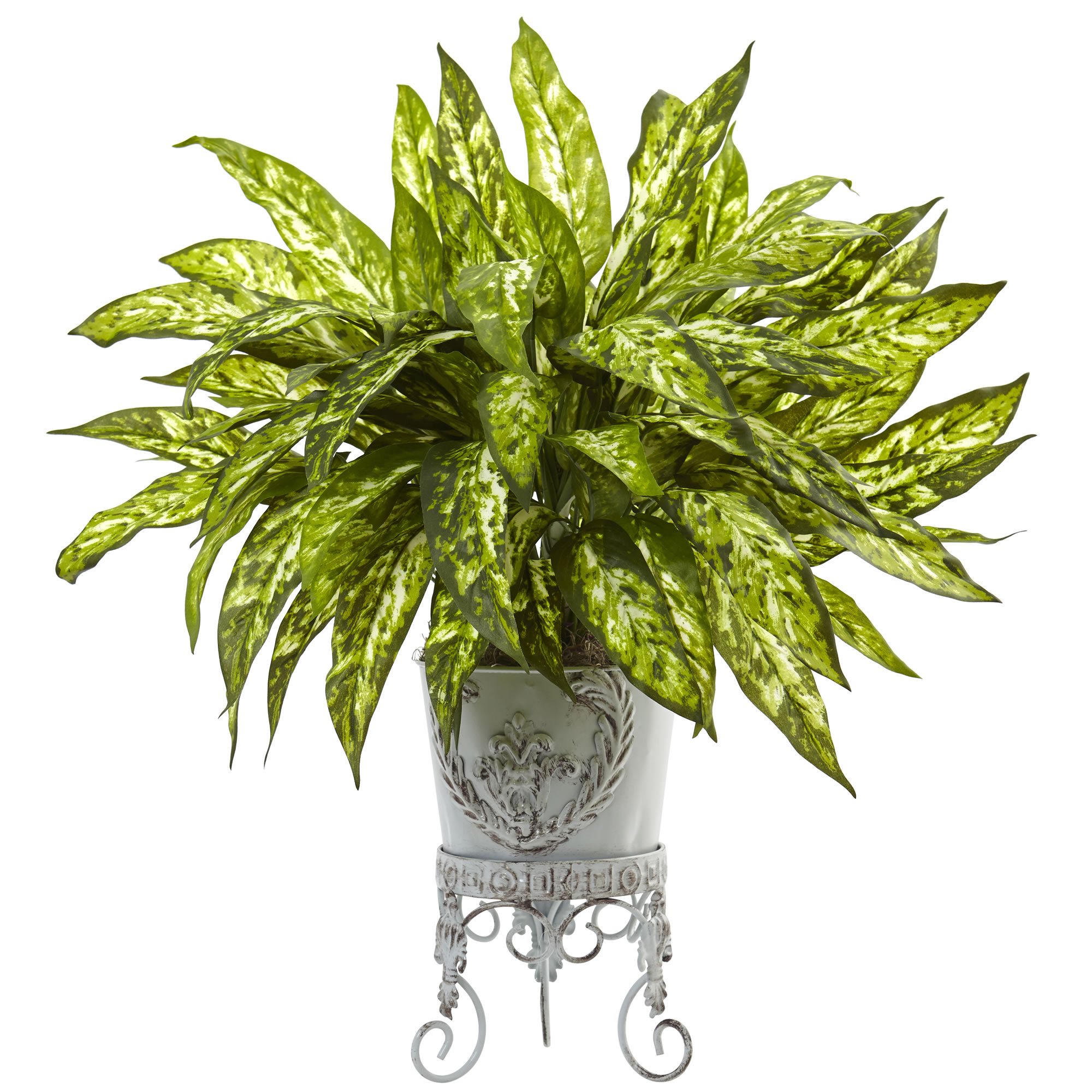 The Chinese Evergreen House Plant |Wholesale Silk Plants Chinese Evergreen House