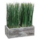Artificial Ornamental Grass Plants