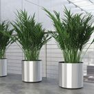 Vista Metallic Planters | Display Planter | SilksAreForever.com
