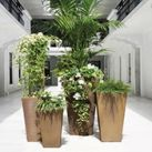 Urban Garden Accent Planters
