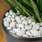 Plant Liners & Stone Dressing | Planter Accessories | SilksAreForever